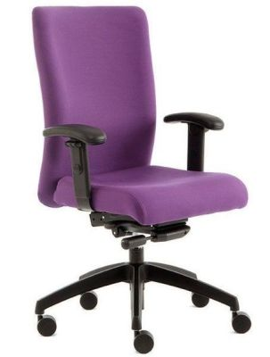 Adept Ergonomic Computer Chair With Extra Back Support A Smart Chair With Synchro Action