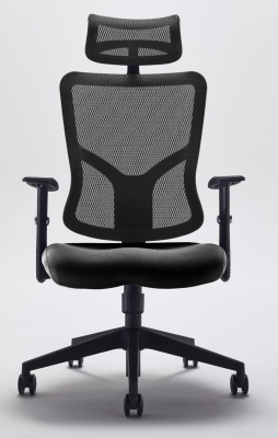 Kempes Designer Mesh Chair