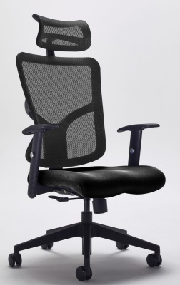 Kempes Ergonomic Mesh Chair Front Angle