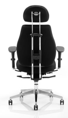 Chiro Plus Ergonomic Chair Rear View