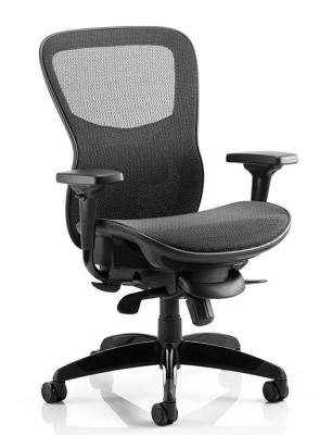 Shadow All Mesh Task Chair