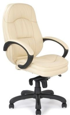 Trojan Executive Chair In Soft Feel Cream Leather