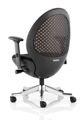 Ovum Designer Mesh Chair Rear View