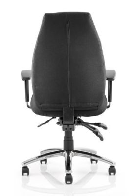 Torso Ergonomic Task Chair