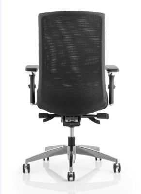 Telsa Mesh Task Chair