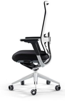 TNK Flex Chair 2