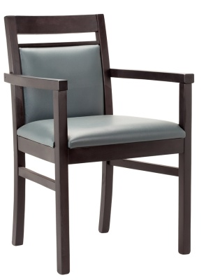 Portiss Dining Armchair