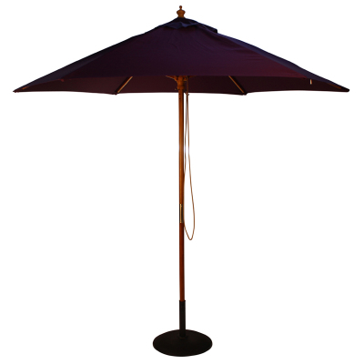 Parade Purple Parasol